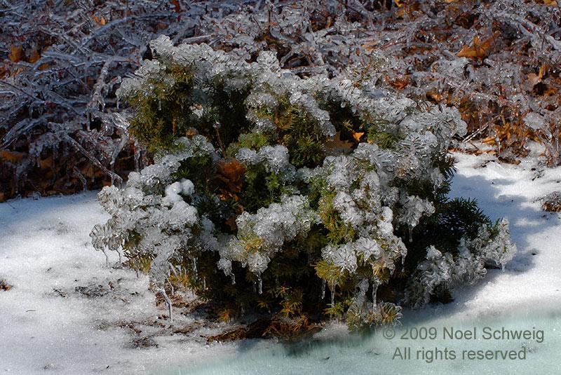 http://noelschweig.com/photos/gallery/water/water800/water9.jpg